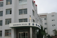 yantai_bilingualschool_031