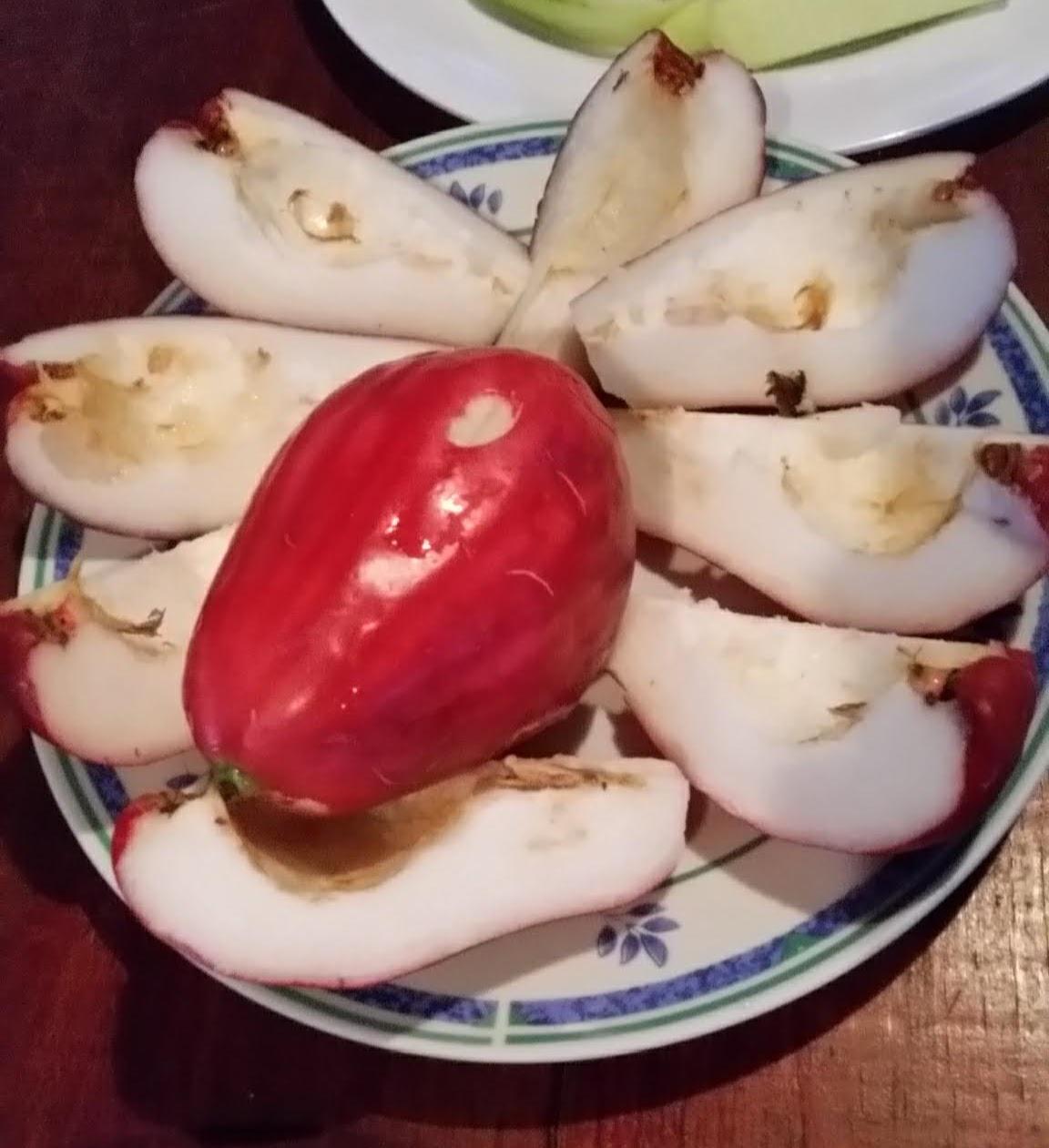 Costa-Rica-Food-25