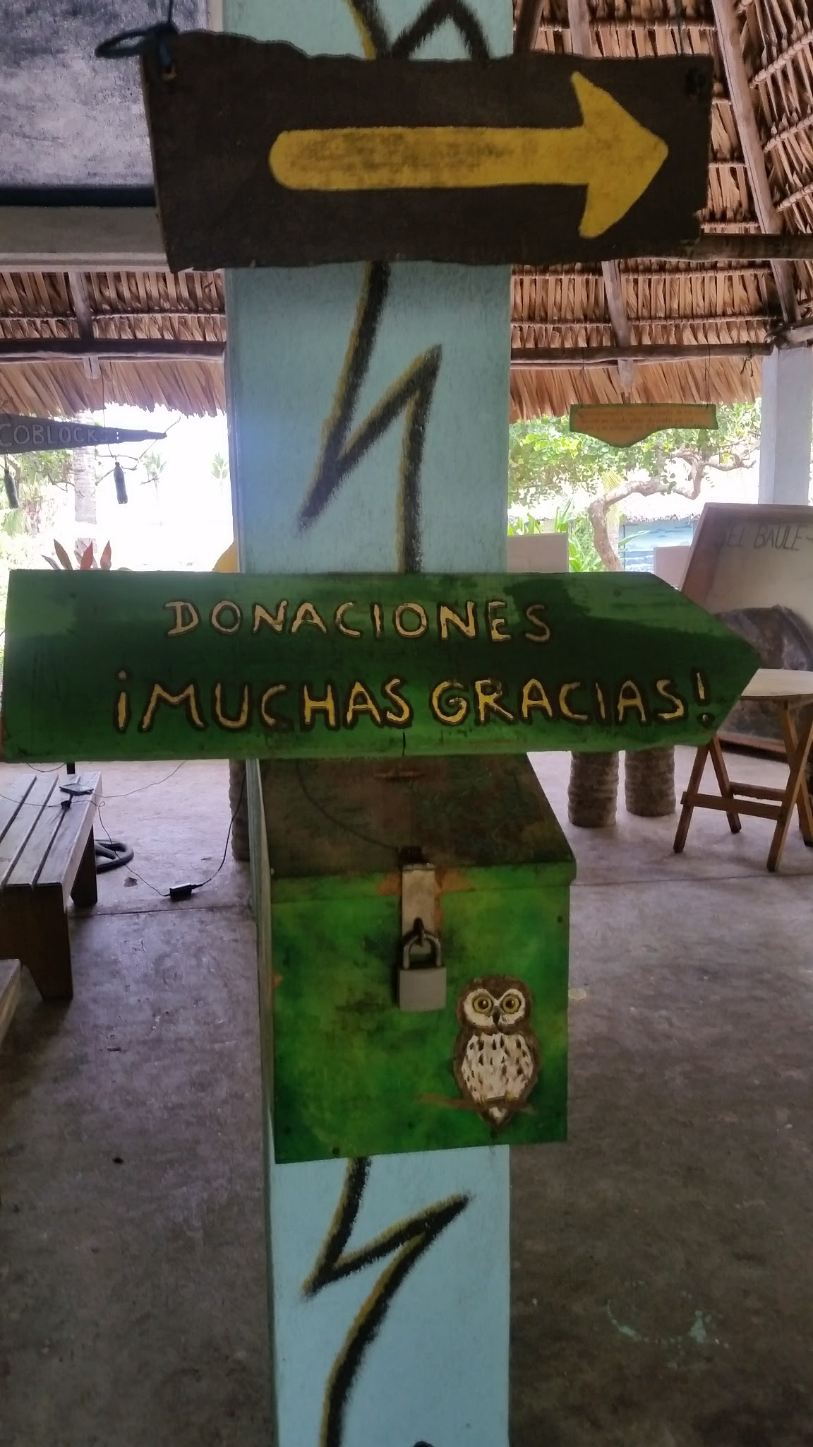 guatemala-monterrico-sea-turtle-conservation25