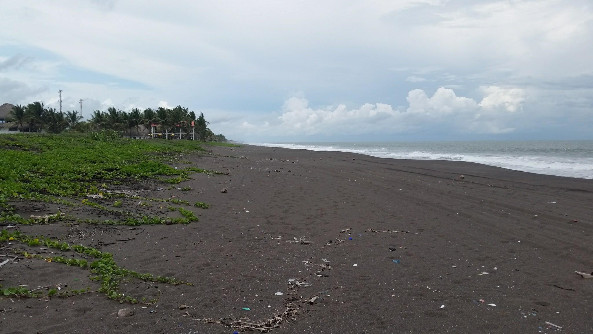 guatemala-monterrico-sea-turtle-conservation81