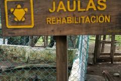 guatemala-monterrico-sea-turtle-conservation30