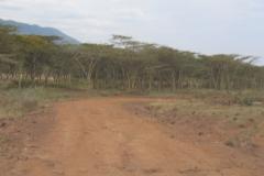 kenya_riftvalley_landscape_06