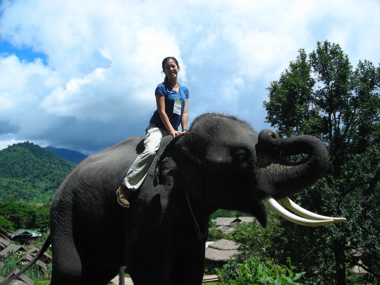 Thailand Elephant Camp Chiang Mai Riding