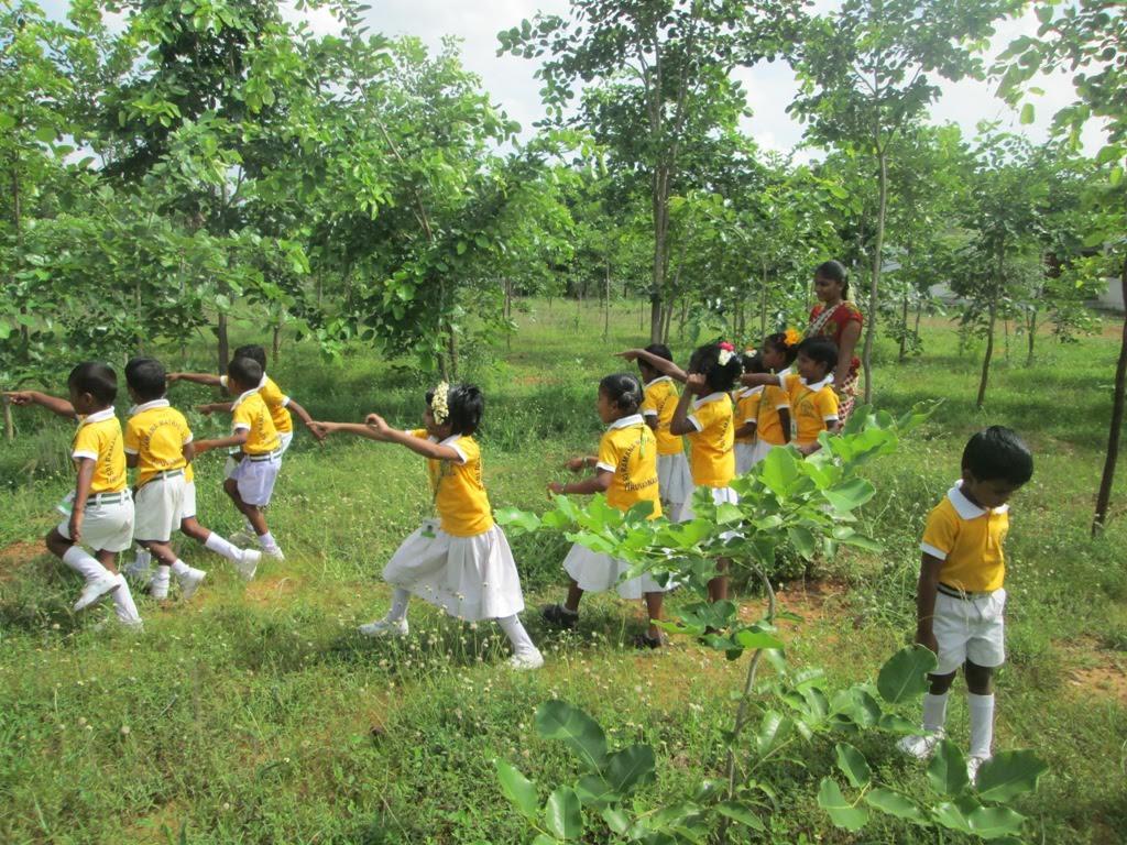 India Teaching Volunteer Butterflies