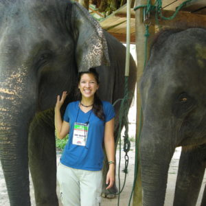 Wildlife and Animal Care Volunteering Abroad